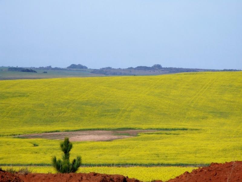 Cadastro ambiental rural empresa