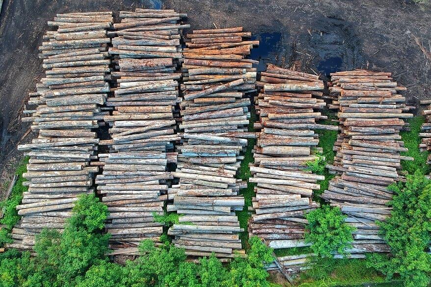 Projeto de Recuperação de Áreas Degradadas - PRAD